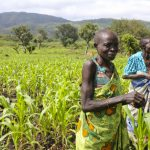 South Sudan Inviting Proposal in Smart Agriculture